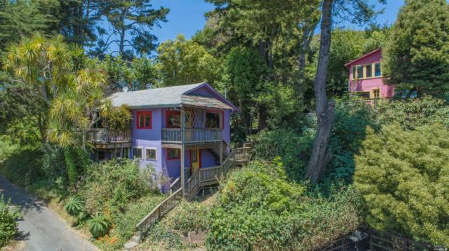 11054-11053 Highway 1 Road, Jenner, CA 95450 (#21918888) :: RE/MAX GOLD