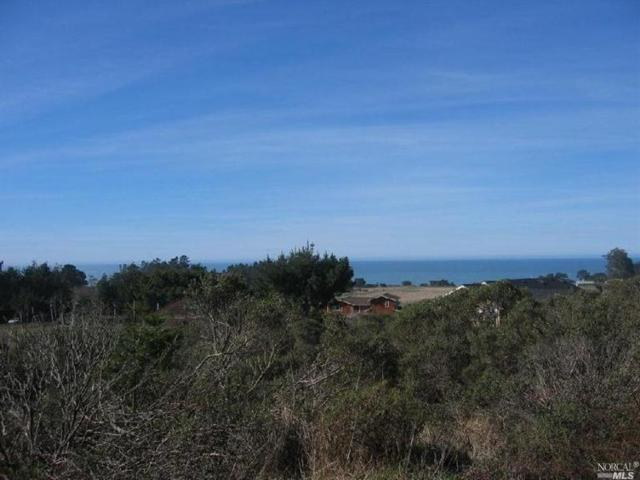 44361 O Rorey S Roost Road, Manchester, CA 95459 (#21919421) :: RE/MAX GOLD