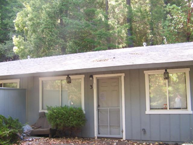 25343 Madrone Drive, Willits, CA 95490 (#21920053) :: RE/MAX GOLD