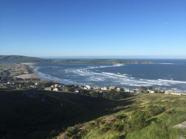 49 Kona Lane, Dillon Beach, CA 94929 (#21920124) :: RE/MAX GOLD