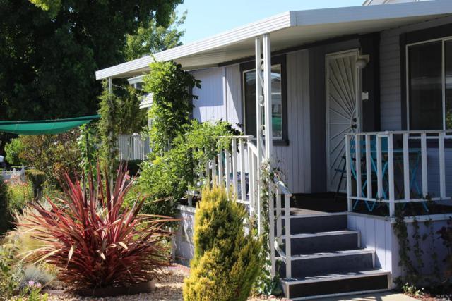 117 Oakwood Drive, Petaluma, CA 94954 (#21920557) :: RE/MAX GOLD
