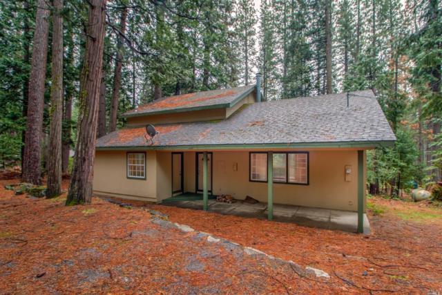 1329 Sugar Loaf Avenue, Kyburz, CA 95720 (#21920885) :: Team O'Brien Real Estate