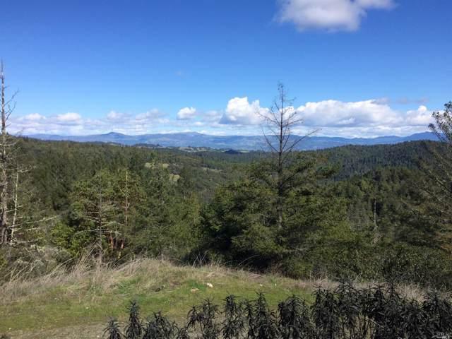 5364 Palmer Creek Road, Healdsburg, CA 95448 (#21923782) :: RE/MAX GOLD