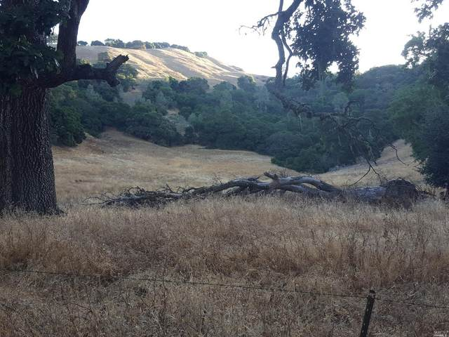 0 Chiles Pope Valley Road, St. Helena, CA 94574 (#21923788) :: Team O'Brien Real Estate
