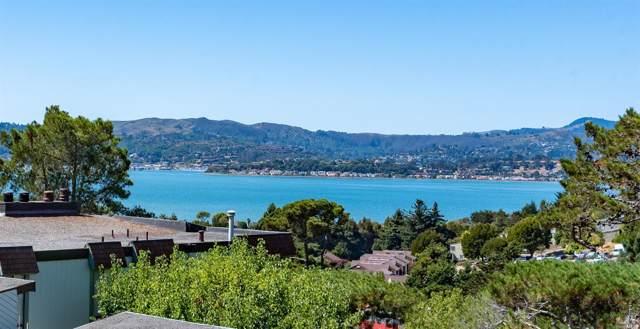 60 Lyford Drive, Tiburon, CA 94920 (#21924297) :: Lisa Perotti   Zephyr Real Estate