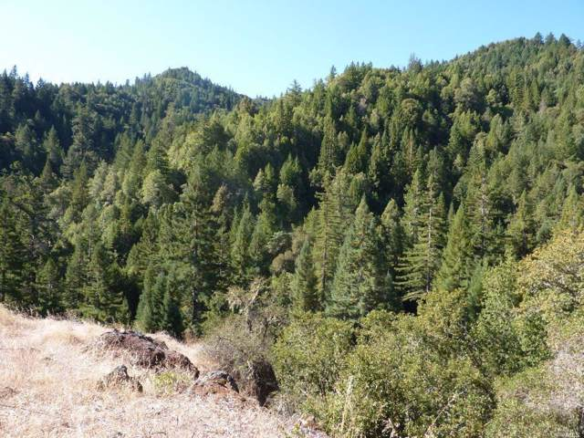 4225 Reeves Canyon Road, Redwood Valley, CA 95470 (#21924597) :: RE/MAX GOLD