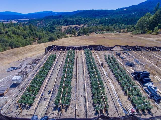 Covelo, CA 95428 :: Intero Real Estate Services