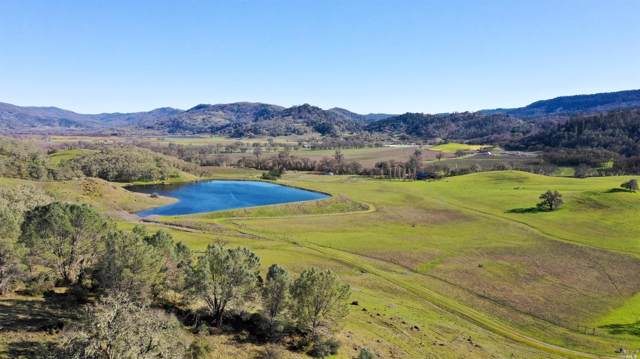 0 Barnett Road, St. Helena, CA 94567 (#21926234) :: W Real Estate | Luxury Team