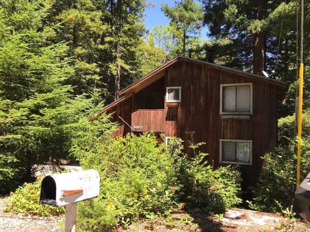 24823 Clover Road, Willits, CA 95490 (#21926835) :: Rapisarda Real Estate