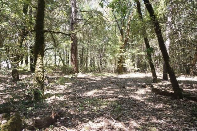 4271 Ca-299 Highway, Burnt Ranch, CA 95527 (#21926843) :: Rapisarda Real Estate