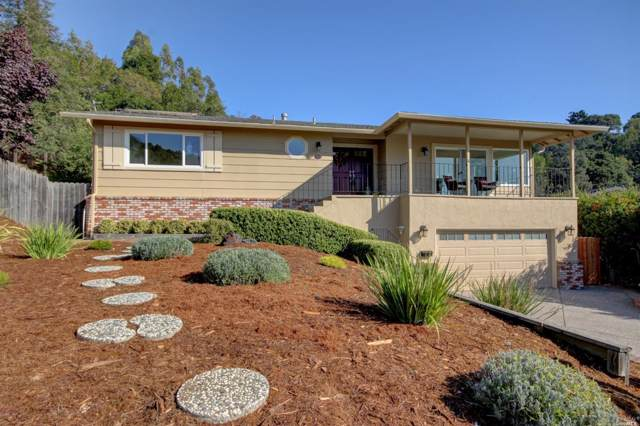 352 Knight Drive, San Rafael, CA 94901 (#21926960) :: Team O'Brien Real Estate