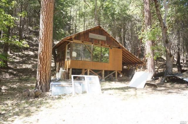 860 Mule Gulch Road, Weaverville, CA 96024 (#21927001) :: Intero Real Estate Services