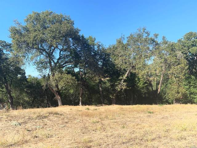 6056 Lichau Road, Penngrove, CA 94951 (#21927392) :: Team O'Brien Real Estate
