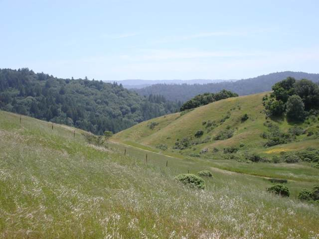 5888 Lucas Valley Road, Nicasio, CA 94946 (#21928310) :: RE/MAX GOLD