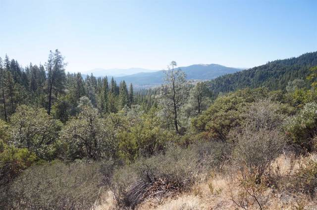 1130 Black Bear Road, Weaverville, CA 96093 (#21928791) :: Rapisarda Real Estate