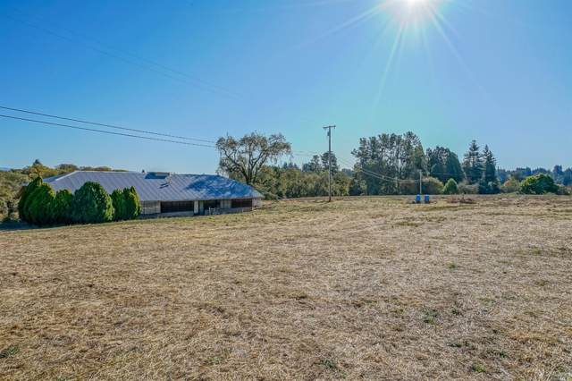 4119 Bones Road, Sebastopol, CA 95472 (#21929464) :: Intero Real Estate Services
