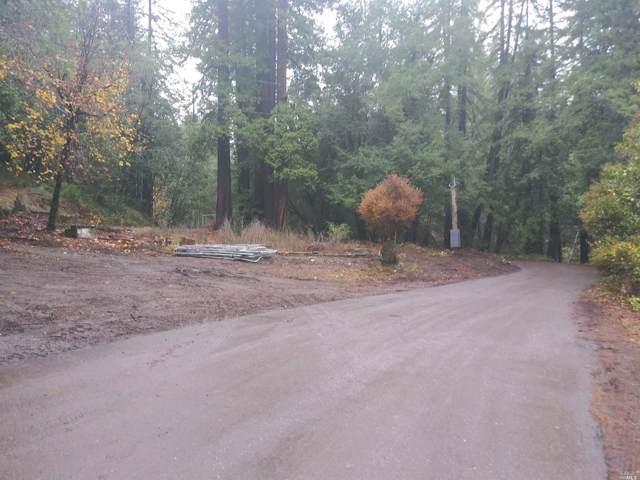 11190 Mcpeak Road, Forestville, CA 95436 (#21930366) :: Intero Real Estate Services