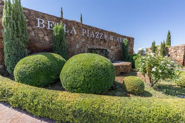 Plymouth, CA 95669 :: W Real Estate | Luxury Team