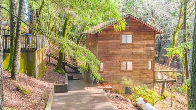 24436 Birch Street, Willits, CA 95490 (#22000688) :: W Real Estate | Luxury Team