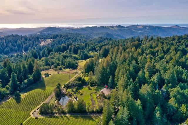 17801 Willow Creek Road, Occidental, CA 95465 (#22000689) :: W Real Estate | Luxury Team