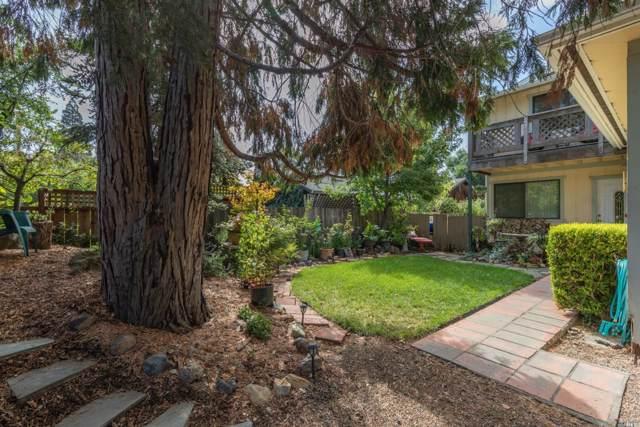 477 W Spain Street, Sonoma, CA 95476 (#22000845) :: Lisa Perotti | Zephyr Real Estate