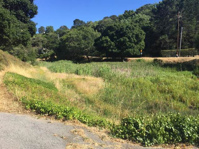 5 Bay Canyon Road, Novato, CA 94945 (#22000864) :: Rapisarda Real Estate