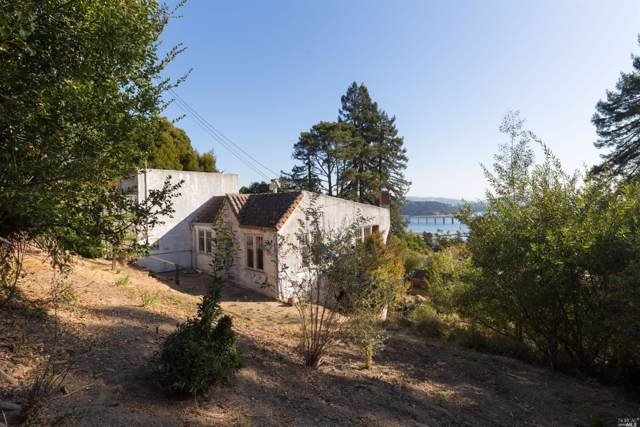 217 Cleveland Avenue, Mill Valley, CA 94941 (#22001218) :: Rapisarda Real Estate