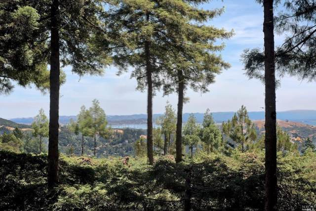 800 Edgewood Avenue, Mill Valley, CA 94941 (#22001295) :: Zephyr Real Estate