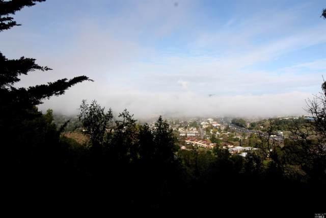 207 Chula Vista Drive, San Rafael, CA 94901 (#22001420) :: Intero Real Estate Services