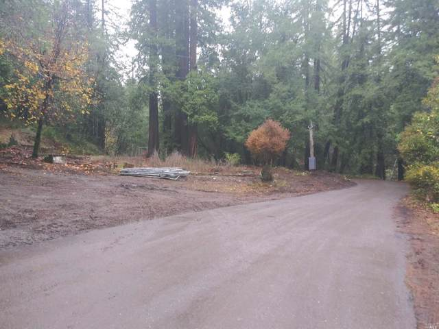 11190 Mcpeak Road, Forestville, CA 95436 (#22001593) :: RE/MAX GOLD