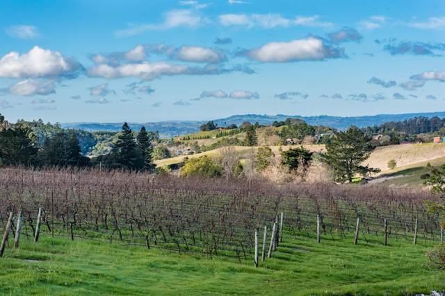 5545 Sonoma Mountain Road, Santa Rosa, CA 95404 (#22001683) :: Lisa Perotti | Zephyr Real Estate