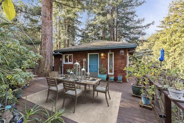 50 Quarry Road, Mill Valley, CA 94941 (#22001916) :: Kendrick Realty Inc - Bay Area