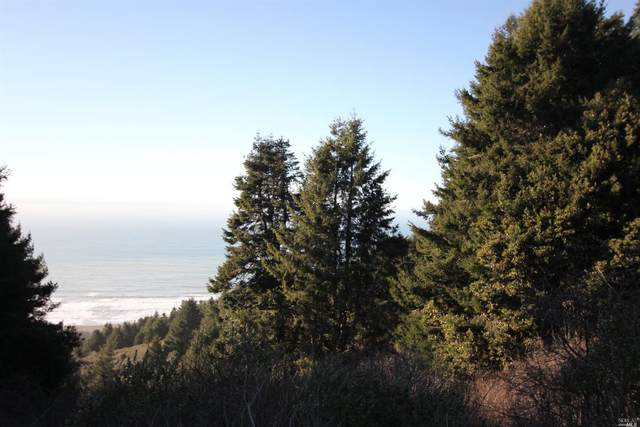 40100 Sea View Court, Westport, CA 95488 (#22002858) :: Rapisarda Real Estate