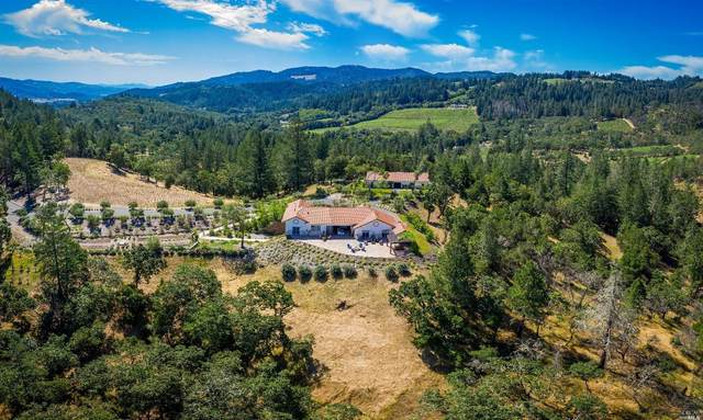 270 Franz Valley School Road, Calistoga, CA 94515 (#22003449) :: W Real Estate | Luxury Team