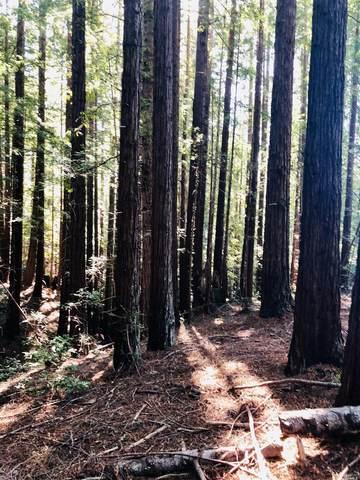0 0 Forest Court, Gualala, CA 95445 (#22003595) :: Rapisarda Real Estate