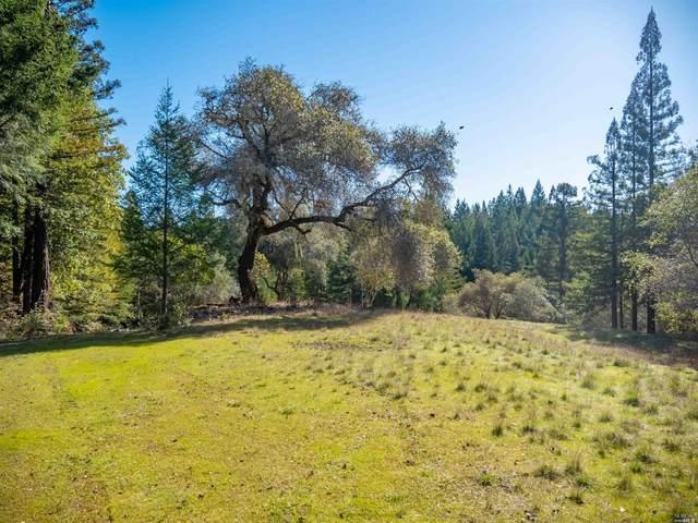 17700 Appian Way, Navarro, CA 95463 (#22003808) :: Lisa Perotti | Zephyr Real Estate