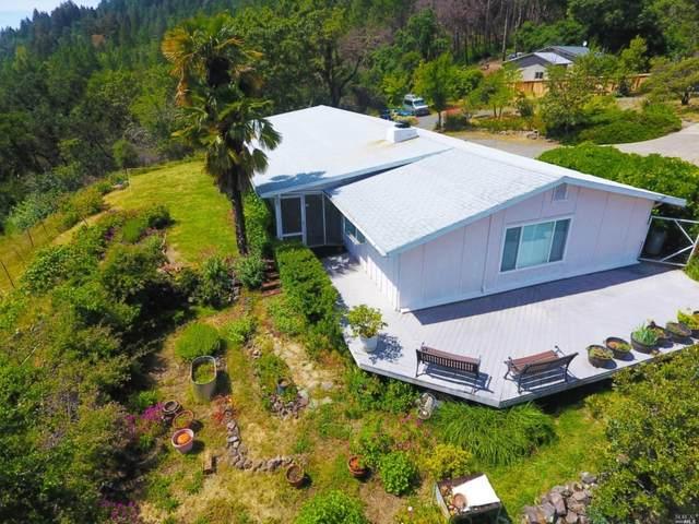 2201 Mount Veeder Road, Napa, CA 94558 (#22003810) :: Hiraeth Homes