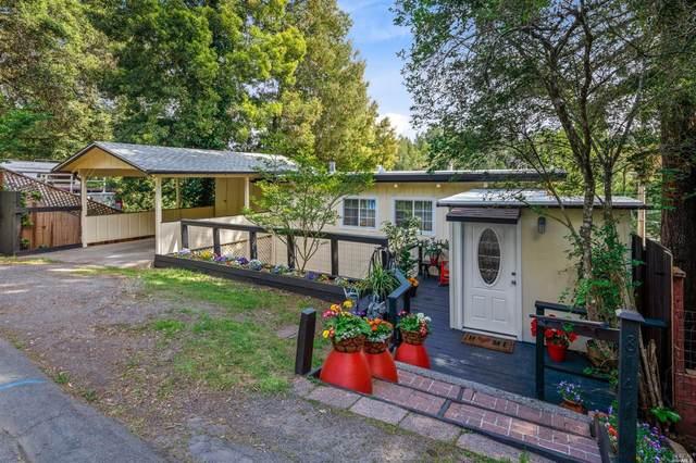 8141 Grape Avenue, Forestville, CA 95436 (#22004152) :: HomShip