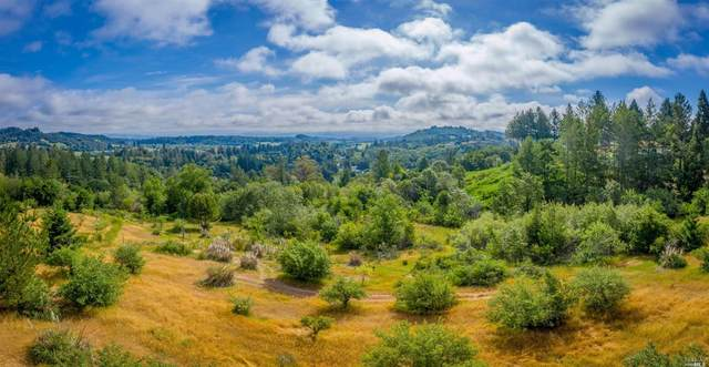 0 Giusti Road, Forestville, CA 95436 (#22004383) :: RE/MAX GOLD