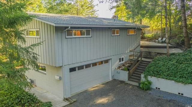 616 Vine Avenue, Sebastopol, CA 95472 (#22004403) :: RE/MAX GOLD