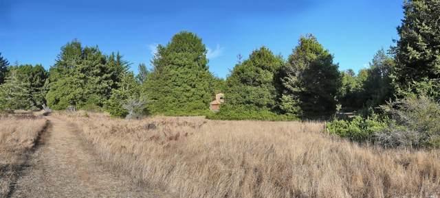 230 Screech Owl, The Sea Ranch, CA 95497 (#22004703) :: Team O'Brien Real Estate