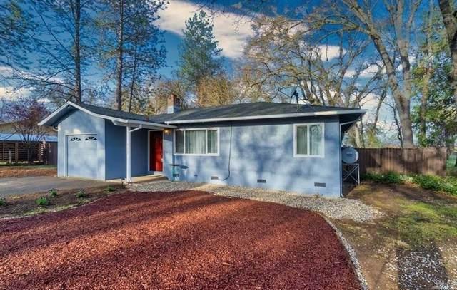 9005 Bonham Road, Lower Lake, CA 95457 (#22006762) :: Rapisarda Real Estate