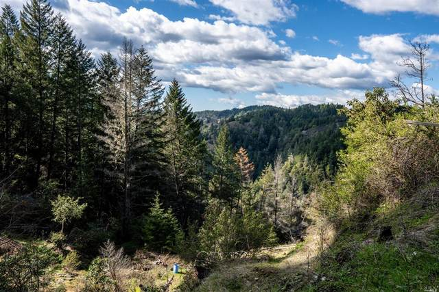 2401 Muir Mill Road, Willits, CA 95490 (#22006930) :: RE/MAX GOLD