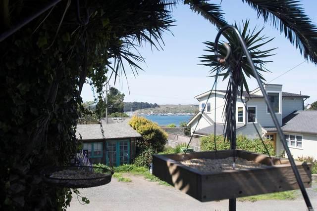 1210 Windy Lane, Bodega Bay, CA 94923 (#22007010) :: RE/MAX GOLD