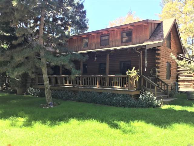 447 Lloyd Lane, Angwin, CA 94508 (#22007116) :: W Real Estate | Luxury Team