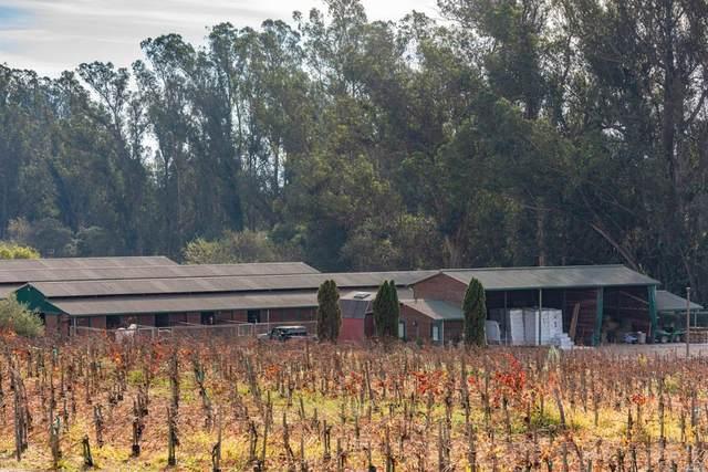 49 Jewett Road, Petaluma, CA 94952 (#22007226) :: Corcoran Global Living
