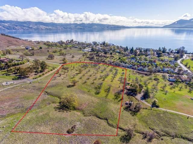 335 Lakeview Road, Lakeport, CA 95453 (#22007533) :: Rapisarda Real Estate