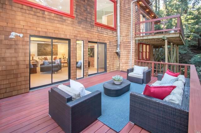 169 Marguerite Avenue, Mill Valley, CA 94941 (#22007763) :: Rapisarda Real Estate
