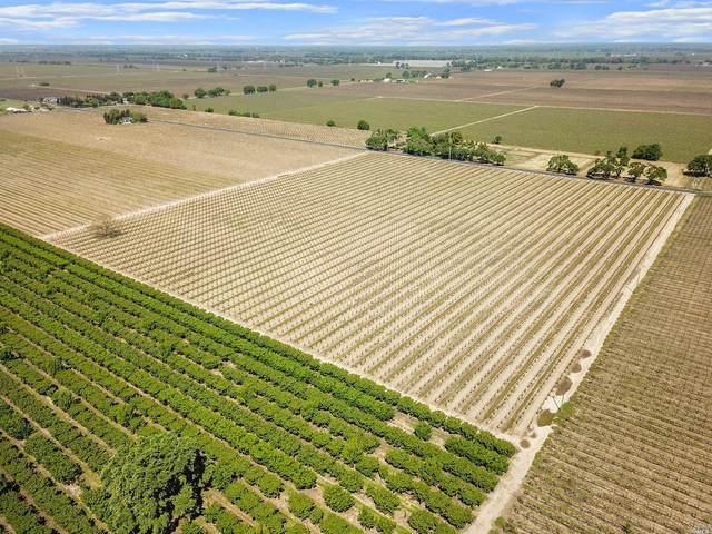 3878 W Peltier Road, Lodi, CA 95240 (#22008105) :: W Real Estate | Luxury Team