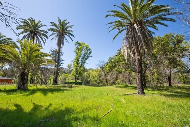 5024 Warm Springs Road, Glen Ellen, CA 95442 (#22009081) :: Team O'Brien Real Estate